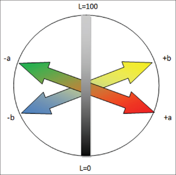 Figure 5: Illustrating the CIELAB color in three-dimensional color space with three axes, that is, L*, a*, and b* where L* = lightness of an object; L* 0 = perfect black; and L* value of 100 = perfect reflecting diffuser. Positive a* = redness; negative a* = greenness; positive b* = yellowness; negative b* = blueness